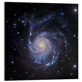 Acrylic print  M101, The Pinwheel Galaxy in Ursa Major - Robert Gendler