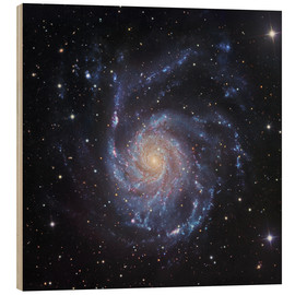 Wood print  M101, The Pinwheel Galaxy in Ursa Major - Robert Gendler