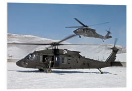 Foam board print  Two US Army UH-60 Black Hawk helicopter - Stocktrek Images