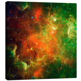 Canvas print  Clusters of young stars