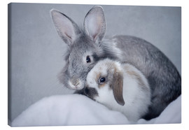 Canvas  Rabbits I - Heidi Bollich