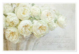 Poster  white roses - Lizzy Pe