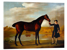 Acrylic print  Horse of the Duke of Marlborough - George Stubbs