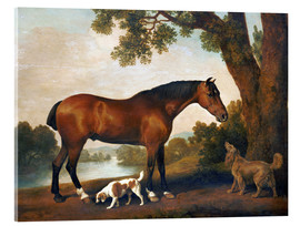 Acrylic glass  Horse and two dogs - George Stubbs