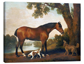 Canvas  Horse and two dogs - George Stubbs