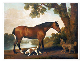 Premium poster  Horse and two dogs - George Stubbs