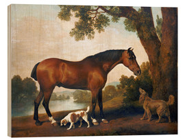 Wood print  Horse and two dogs - George Stubbs
