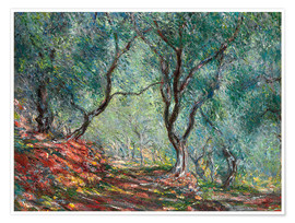 Premium poster  Olive Trees in the Moreno Garden - Claude Monet