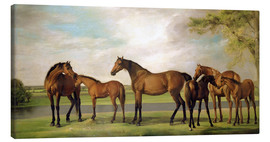 Canvas print  Mares, foals and an approaching storm - George Stubbs