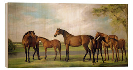Wood print  Mares, foals and an approaching storm - George Stubbs