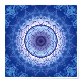 Premium poster  Flower of life blue - Christine Bässler