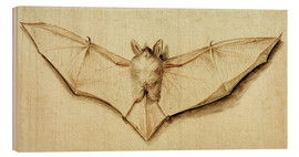 Wood print  Bat with spread wings - Hans Holbein d.J.
