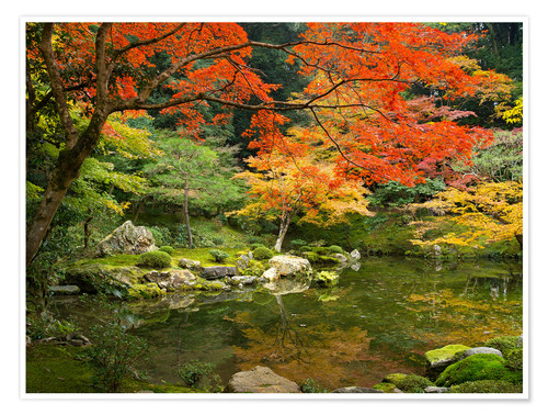 Japanese Garden In Autumn With Red Maple Tree Posters And Prints