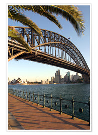 Premium poster  Sydney Harbor Bridge - David Wall