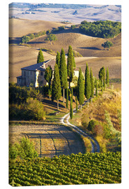 Canvas  Belvedere House in San Quirico - Terry Eggers