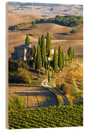 Wood print  Belvedere House in San Quirico - Terry Eggers