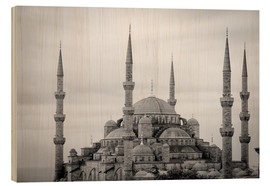 Wood print  the blue mosque in Istanbul / Turkey - gn fotografie