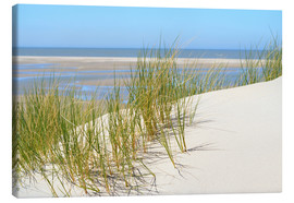 Canvas print  Dune in summer - Susanne Herppich