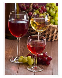 Premium poster  Wine in glasses - Edith Albuschat