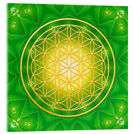 Acrylic print  Flower of life - healing - Dolphins DreamDesign