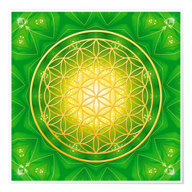 Premium poster  Flower of life - healing - Dolphins DreamDesign