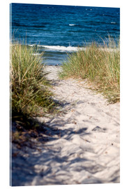 Acrylic print  White sand dune on the island of Rügen - CAPTAIN SILVA
