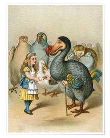 Premium poster The Dodo solemnly presented the thimble from Alice's Adventures in Wonderland