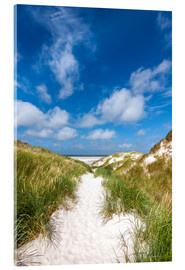 Acrylic print  Path to the beach - Reiner Würz RWFotoArt