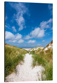 Aluminium print  Path to the beach - Reiner Würz