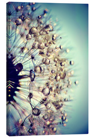 Canvas  Dandelion blue crystal - Julia Delgado