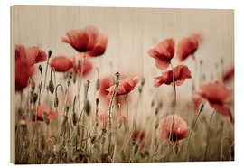 Wood print  Corn Poppy - Nailia Schwarz