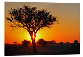 Acrylic glass  Sunrise in Africa - wiw