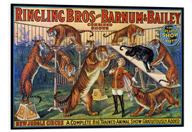 Foam board print  Circus poster from 1920