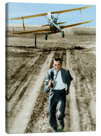 Canvas print  Cary Grant in North by Northwest