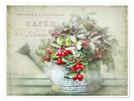Premium poster red berries