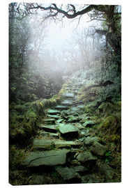 Canvas print  mystical stairs - Nadine Conrad
