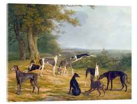 Acrylic print  Nine Greyhounds on a landscape - Jacques Laurent Agasse