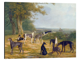 Aluminium print  Nine Greyhounds on a landscape - Jacques Laurent Agasse