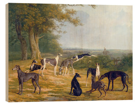 Wood print  Nine Greyhounds on a landscape - Jacques Laurent Agasse