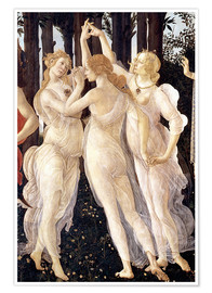Premium poster  The Three Graces - Sandro Botticelli