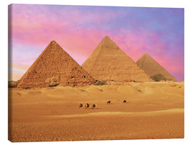 Canvas  Giza Pyramids at sunset - Miva Stock