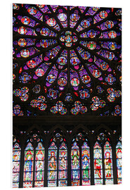 Foam board print  Stained glass windows of Notre-Dame Cathedral. - Kymri Wilt
