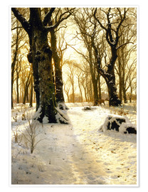 Premium poster Winter forest with deer