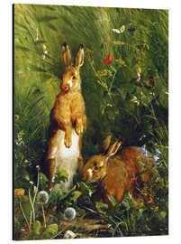 Aluminium print  Rabbits in a meadow - Olaf August Hermansen