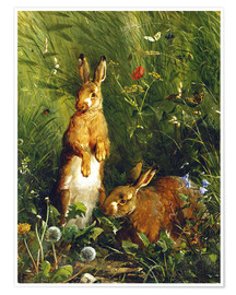 Premium poster  Rabbits in a meadow - Olaf August Hermansen