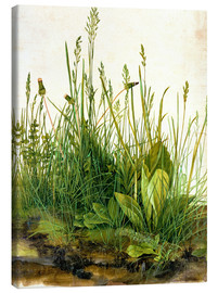 Canvas print  The great piece of turf - Albrecht Dürer