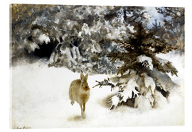 Acrylic print  A hare in the snow - Bruno Andreas Liljefors