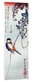 Acrylic print  Swallow sitting on a branch of a wisteria - Utagawa Hiroshige
