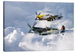 Canvas print  Flying Brothers - airpowerart
