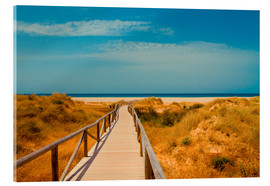 Acrylic print  way to the beach - Tarifa (Andalusia), Spain - gn fotografie